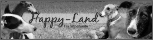 Happy Land  Logo.jpg